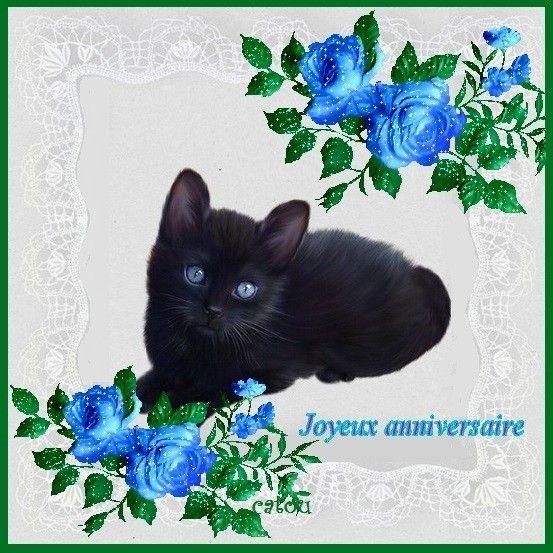 Chat Noir Anniversaire