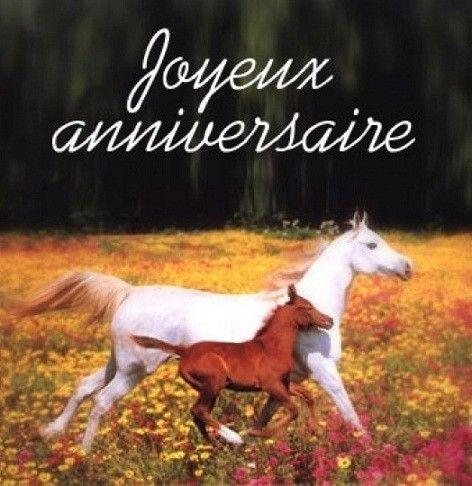 anniversaire et chevaux