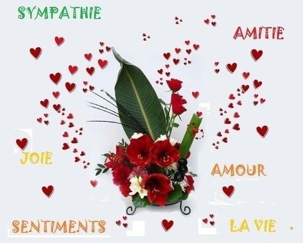 bonjour - Page 16 Df23cf59